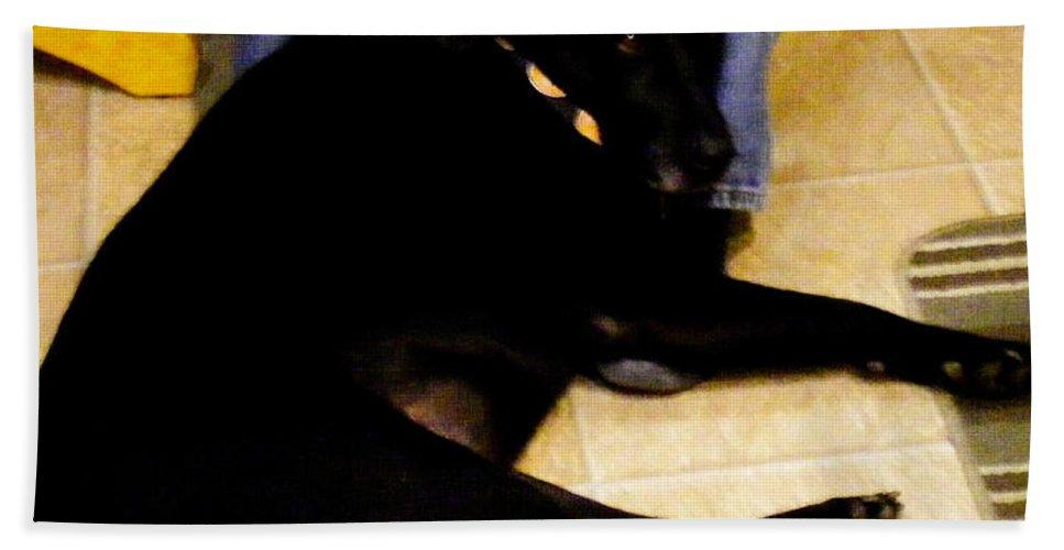 Black Labrador Retriever Beach Towel featuring the photograph Man's Best Friend by Barbara Griffin