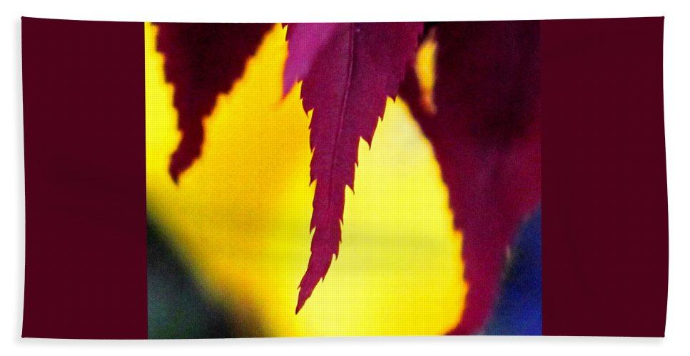 Maroon Beach Towel featuring the photograph Maroon And Yellow by Ian MacDonald