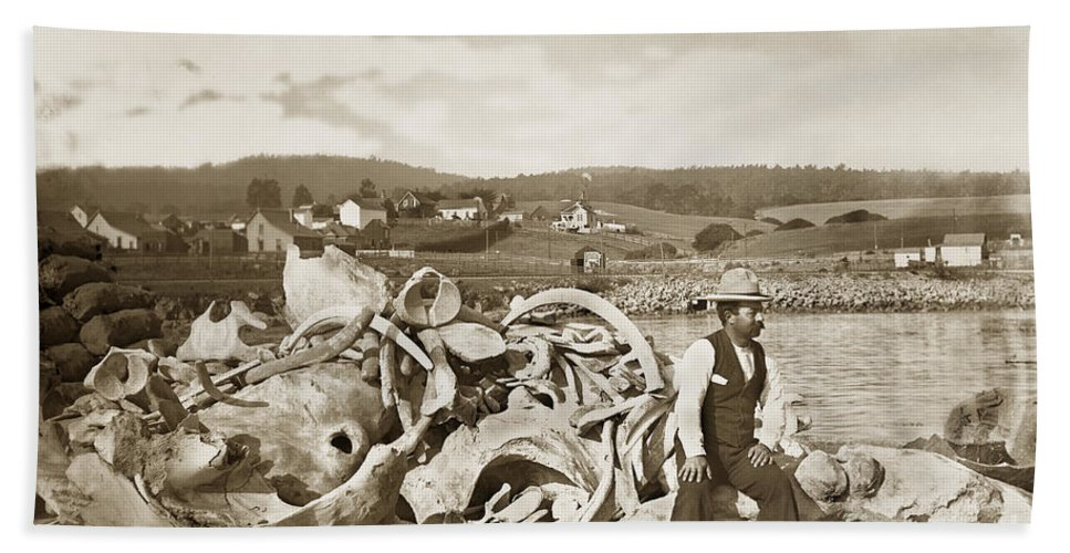 Michael Noon Beach Towel featuring the photograph Michael Noon Sitting On A Pile Of Whale Bones Monterey Wharf Circa 1896 by California Views Mr Pat Hathaway Archives