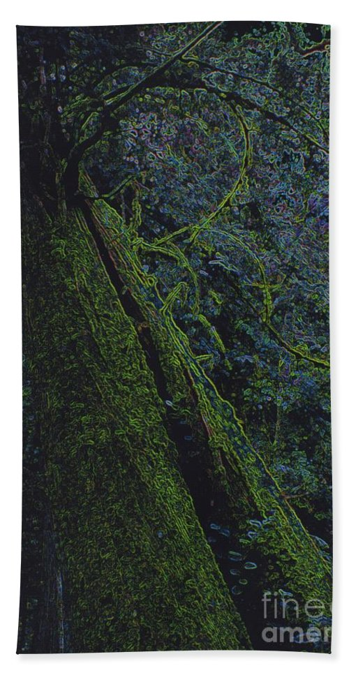 First Star Beach Towel featuring the photograph Midnight Tree By Jrr by First Star Art