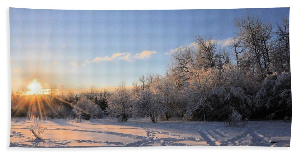 Winter Beach Towel featuring the photograph Midwinter Morning by Valerie Kirkwood