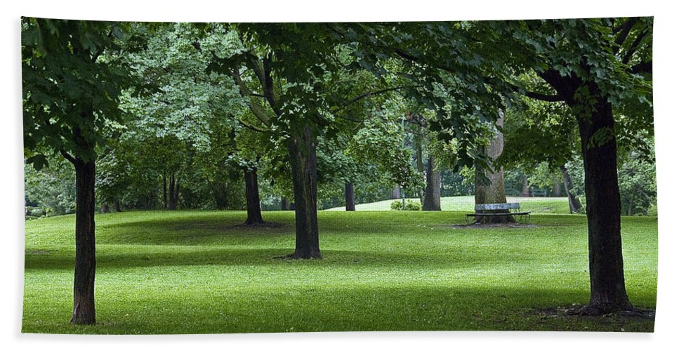 Trees Beach Towel featuring the photograph Monarch Park - 26 by Rick Shea