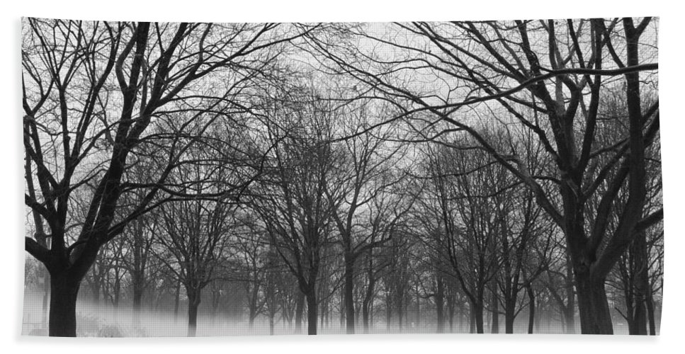 Monarch Park Beach Towel featuring the photograph Monarch Park Ground Fog by Rick Shea