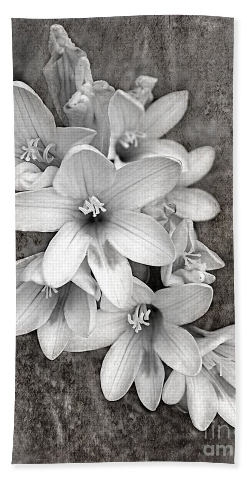 Photography Beach Towel featuring the photograph Monochrome Freesia Canvas Grunge by Kaye Menner