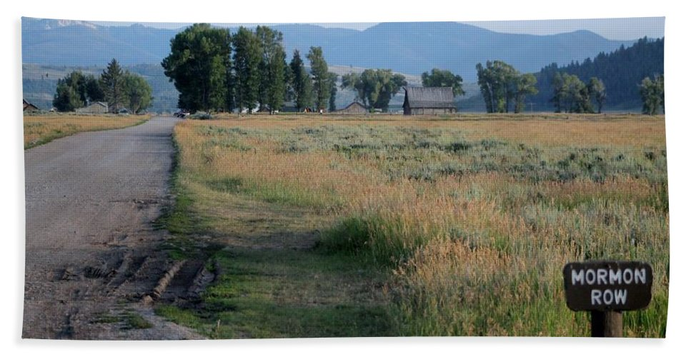 Dirt Road Beach Towel featuring the photograph Mormon Row Road by Catie Canetti