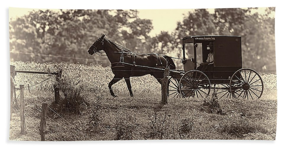 Transportation. Buggy Beach Towel featuring the photograph Morning In Amish Country by Marcia Colelli