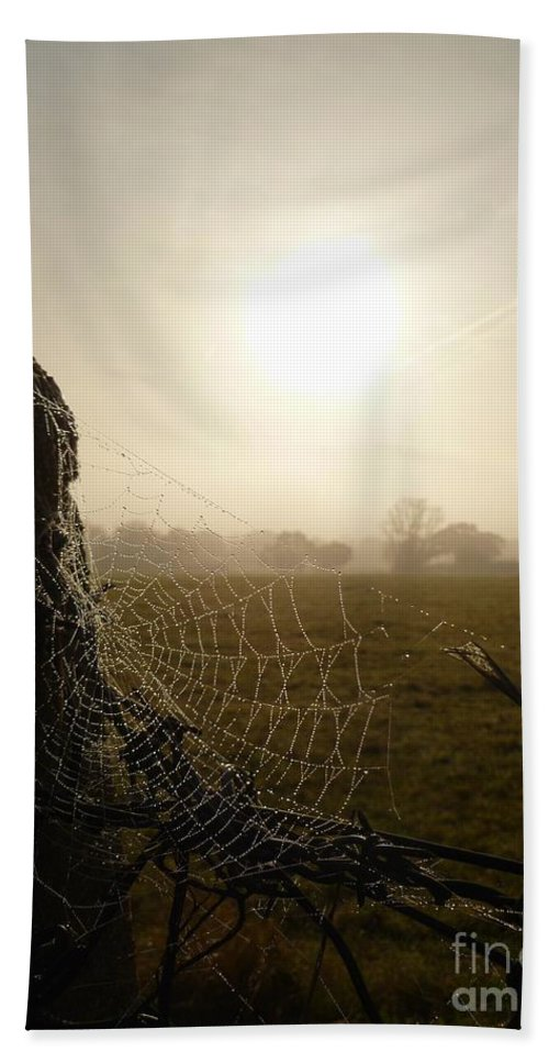 Morning Beach Towel featuring the photograph Morning Mist by Vicki Spindler