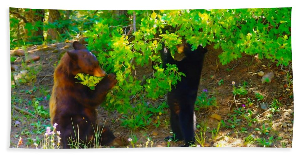 Animals Beach Towel featuring the photograph Mother Bear And Cub by Jeff Swan
