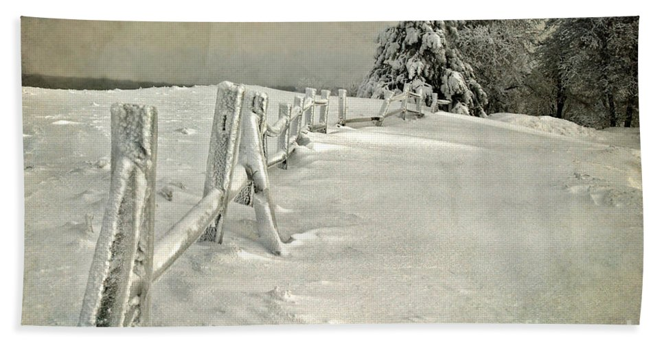 Snow Beach Towel featuring the photograph Mother Nature's Christmas Tree by Lois Bryan