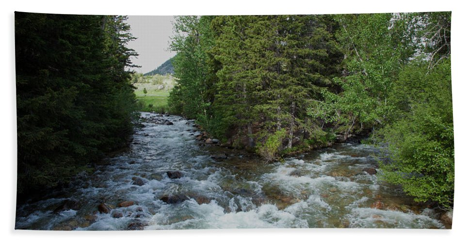 Stream Beach Towel featuring the photograph Mountain Stream by Scott Sanders