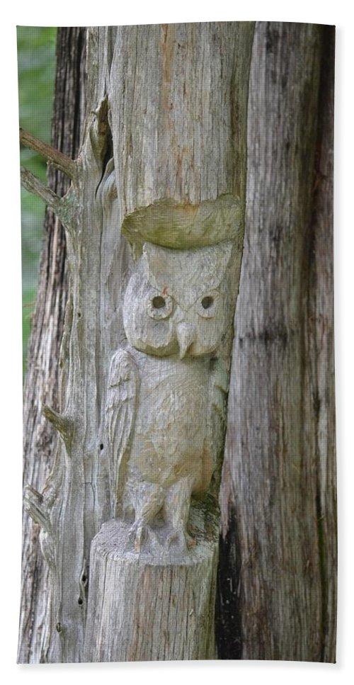 Mr Tingle's Owl Beach Towel featuring the photograph Mr Tingle's Owl by Maria Urso