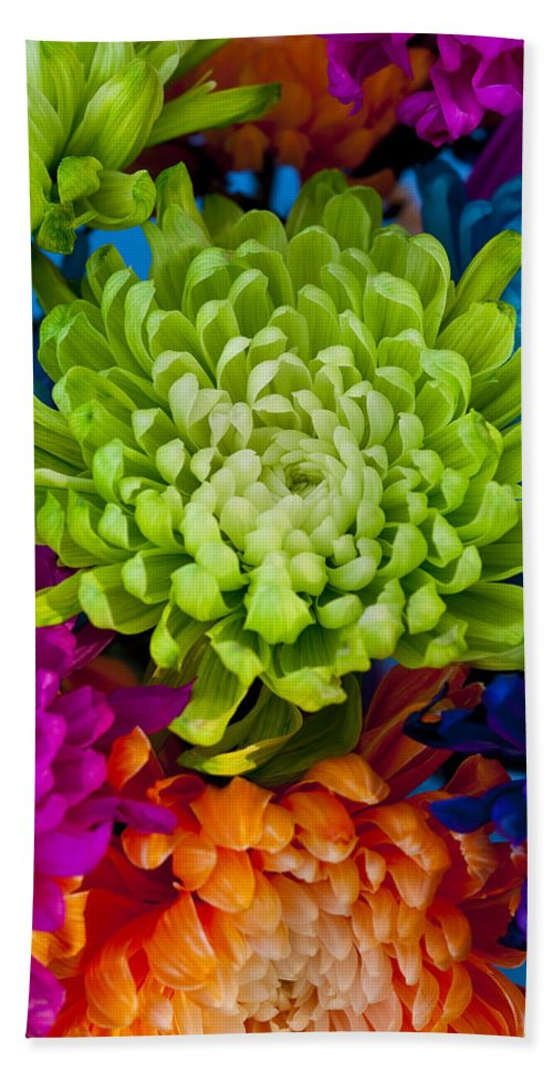 Blossom Beach Towel featuring the photograph Multicolored Chrysanthemums by Jim Corwin
