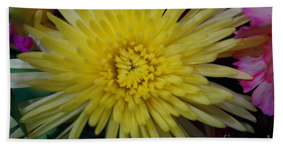 Yellow Beach Towel featuring the photograph Mums The Word by Ray Konopaske