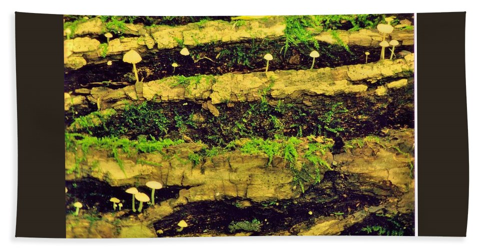 Woods Beach Towel featuring the photograph Mushrooms Lichen And Moss On Log by Rory Cubel