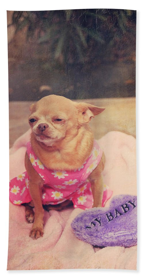 Dogs Beach Towel featuring the photograph My Baby by Laurie Search