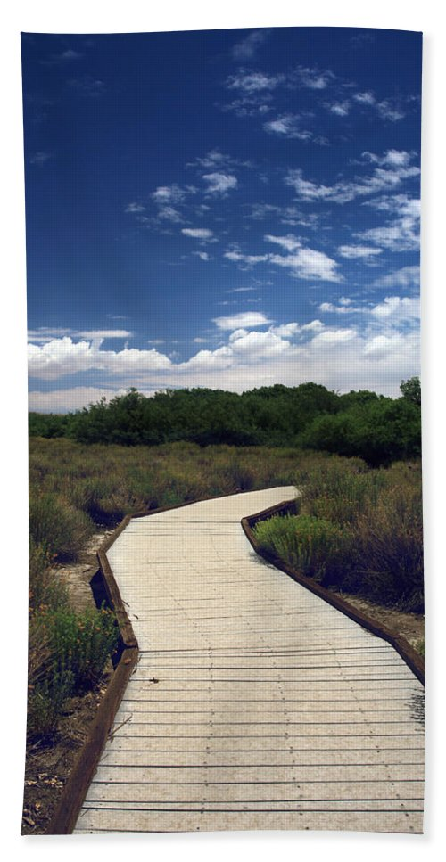 Big Morongo Canyon Preserve Beach Towel featuring the photograph My Mind Wanders by Laurie Search