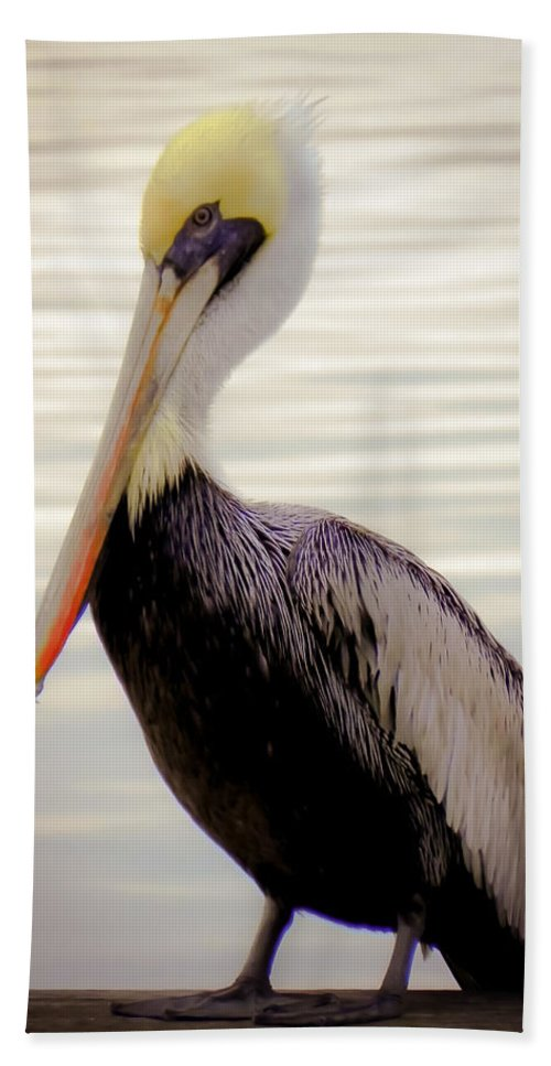 Bird Beach Towel featuring the photograph My Visitor by Karen Wiles