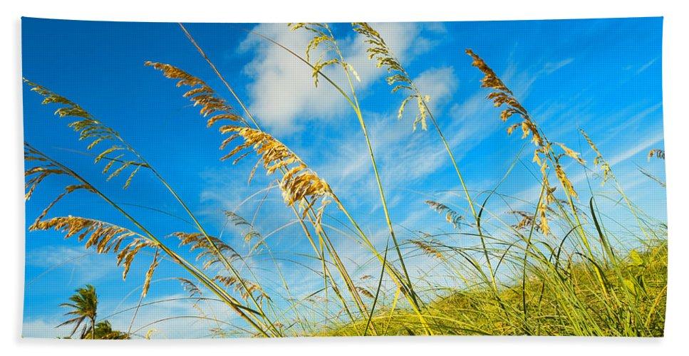 Crandon Park Beach Beach Towel featuring the photograph Nature's Beauty by Raul Rodriguez
