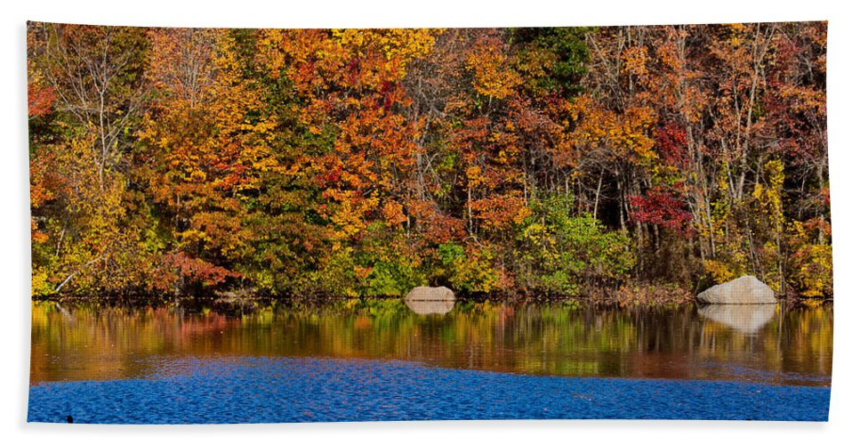 Autumn Beach Towel featuring the photograph Natures Colorful Autumn by Karol Livote