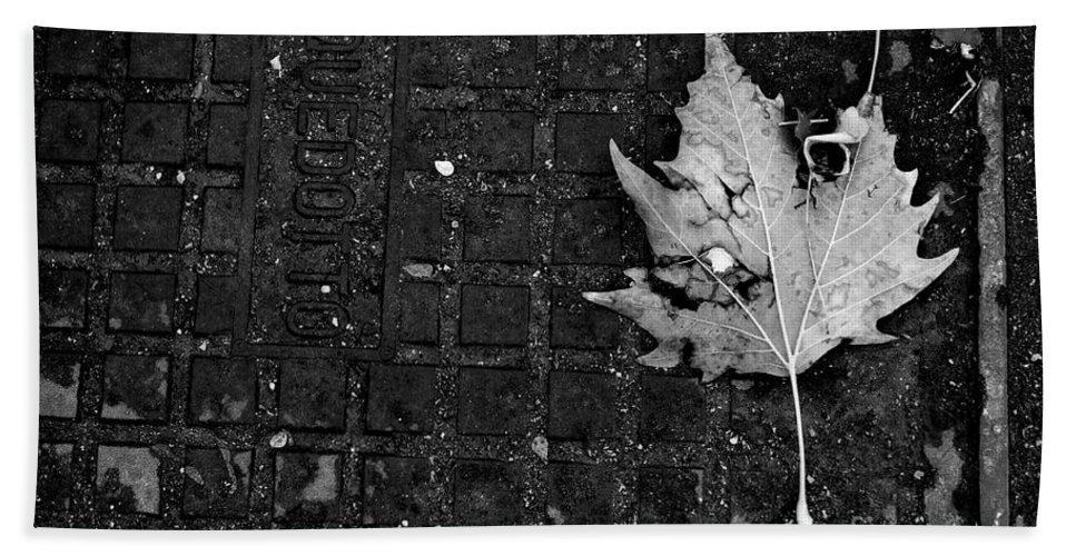 Leaf Beach Towel featuring the photograph Never Let You Down by Donato Iannuzzi