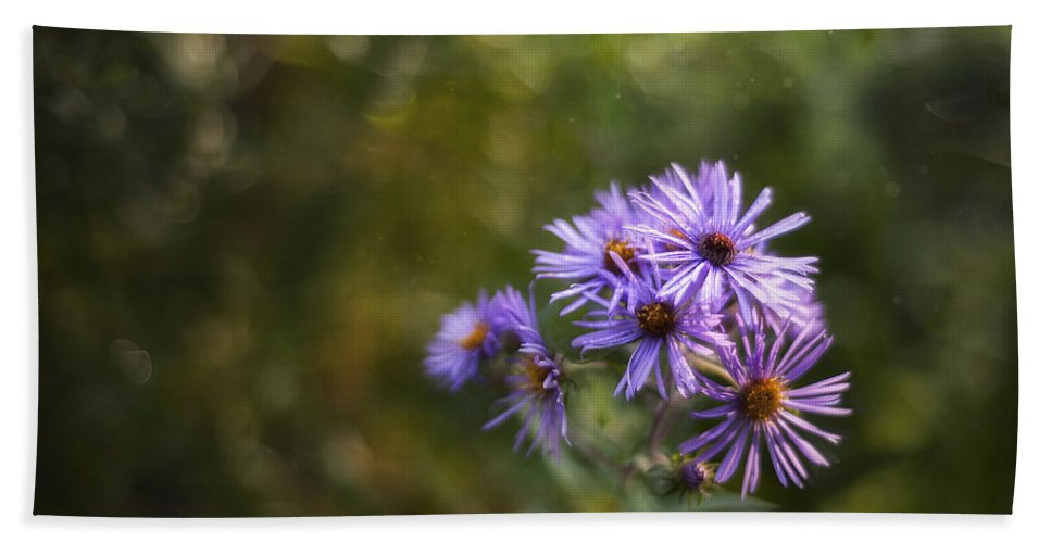 Flowers Beach Towel featuring the photograph New England Asters by Scott Norris