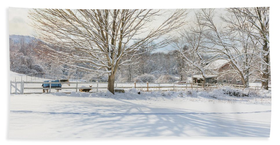 New England Winter Beach Towel featuring the photograph New England Winter by Bill Wakeley