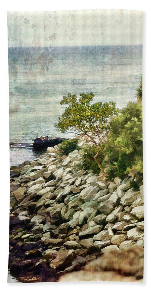 Julia Springer Beach Towel featuring the photograph Newport Cliff Walk by Julia Springer