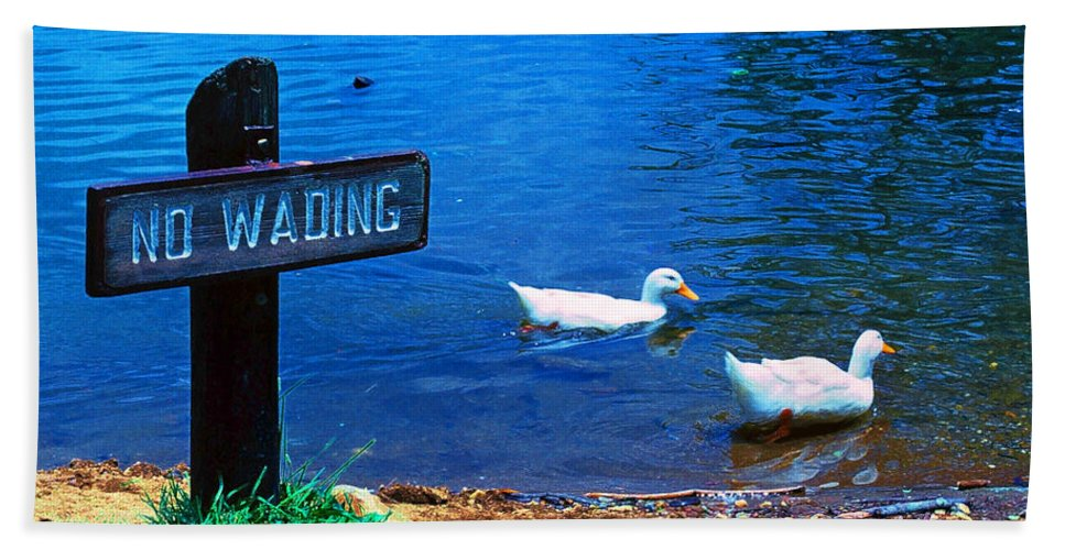 Wading Beach Towel featuring the photograph No Wading by Marie Hicks