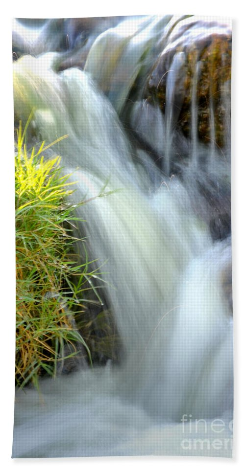 Water Beach Towel featuring the photograph Oasis by Deb Halloran