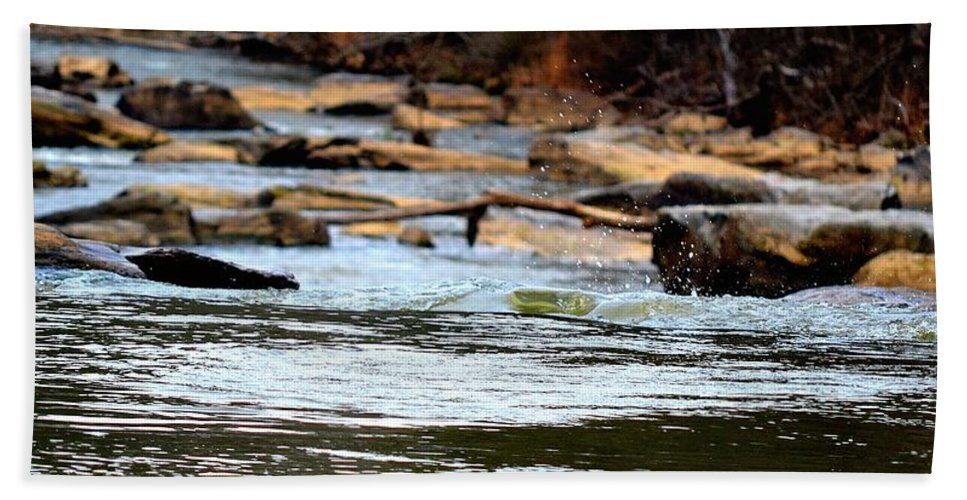 Sweetwater Creek State Park Beach Towel featuring the photograph On The Creek by Tara Potts