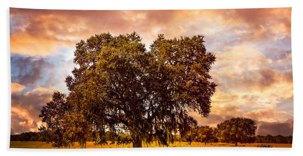 Clouds Beach Towel featuring the photograph On The Prairie by Debra and Dave Vanderlaan