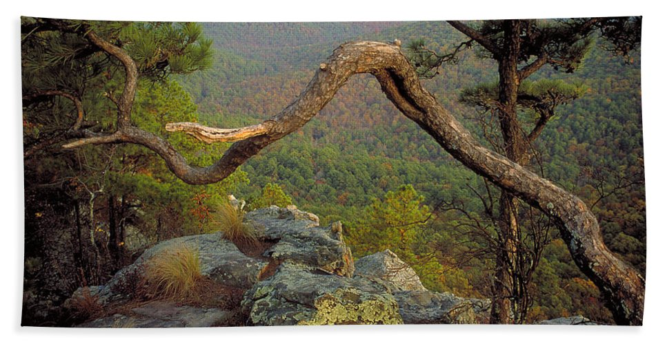 Arkansas Beach Towel featuring the photograph On Top Of Flatside Pinnacle by Jim Murphy