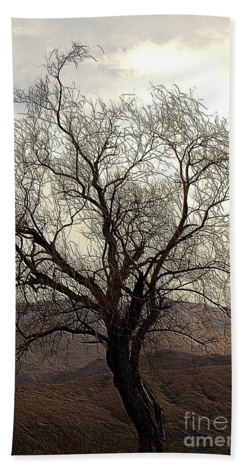 Tree Beach Towel featuring the photograph One Tree by Kathleen Struckle
