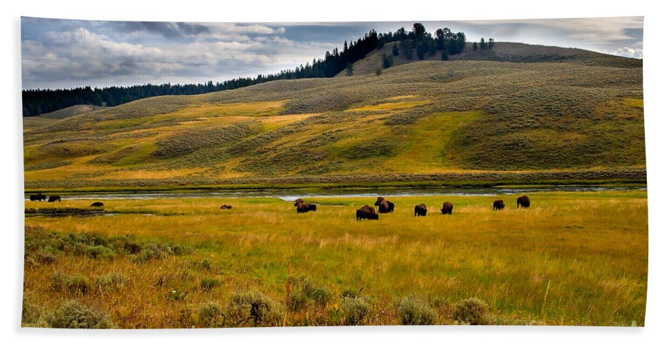 Scenery Beach Towel featuring the photograph Open Range by Robert Bales