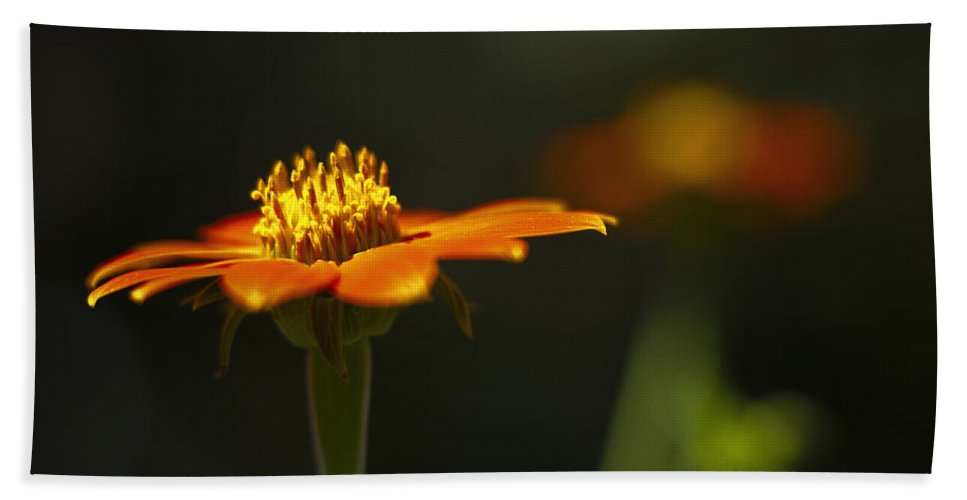 Flower Beach Towel featuring the photograph Orange Flower by Bradley R Youngberg