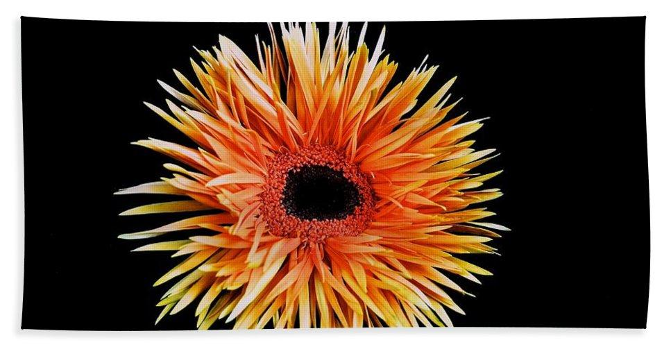Orange Flower Beach Towel featuring the photograph Orange Flower by Kristina Deane