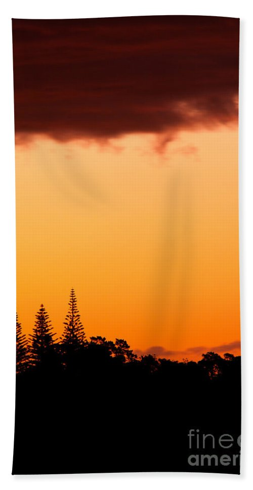 Araucaria Beach Towel featuring the photograph Orange Sunset And Silhouettes Of Norfolk Pines by Stephan Pietzko