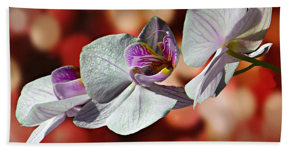 Orchid Beach Towel featuring the photograph Orchid Flower Photographic Art by David Dehner