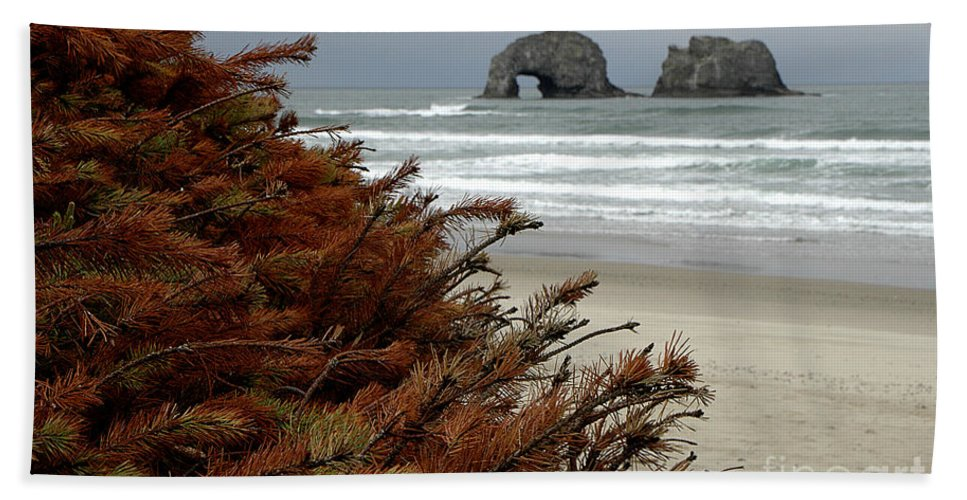 Beach Towel featuring the photograph Oregon Beach by Mike Nellums