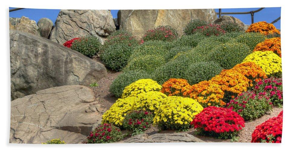 Otts Beach Towel featuring the photograph Ott's Greenhouse - Chrysanthemum Hill - Schwenksville - Pa by Mother Nature