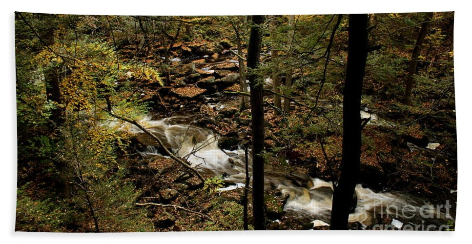River Beach Towel featuring the photograph Over The River And Thru The Wood by Kenny Glotfelty