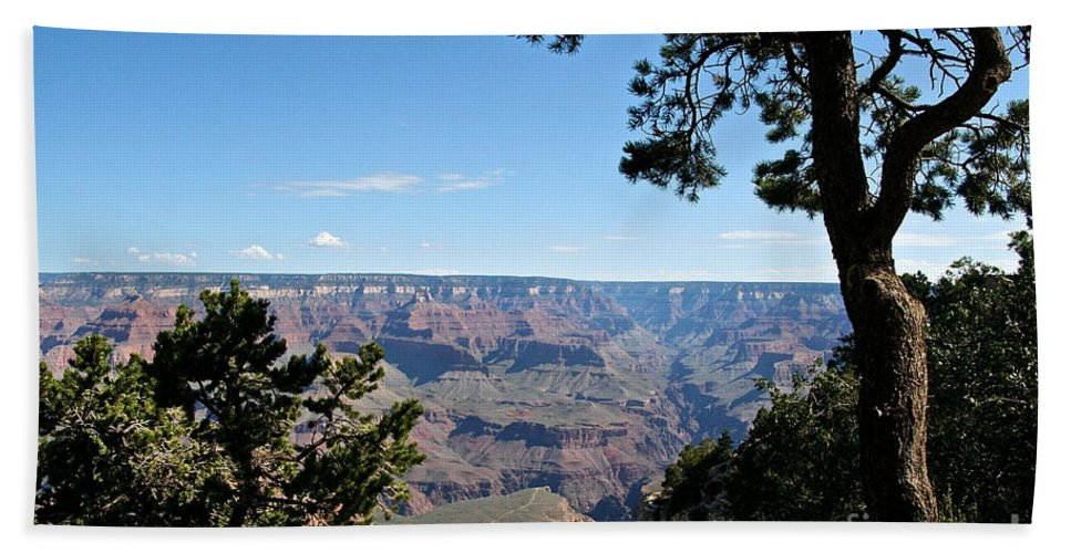 Outdoors Beach Towel featuring the photograph Overlook by Susan Herber