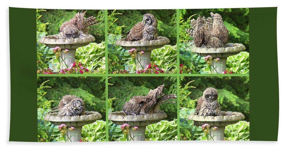 Owl Beach Towel featuring the photograph Owls Do Take Baths by Jennie Marie Schell