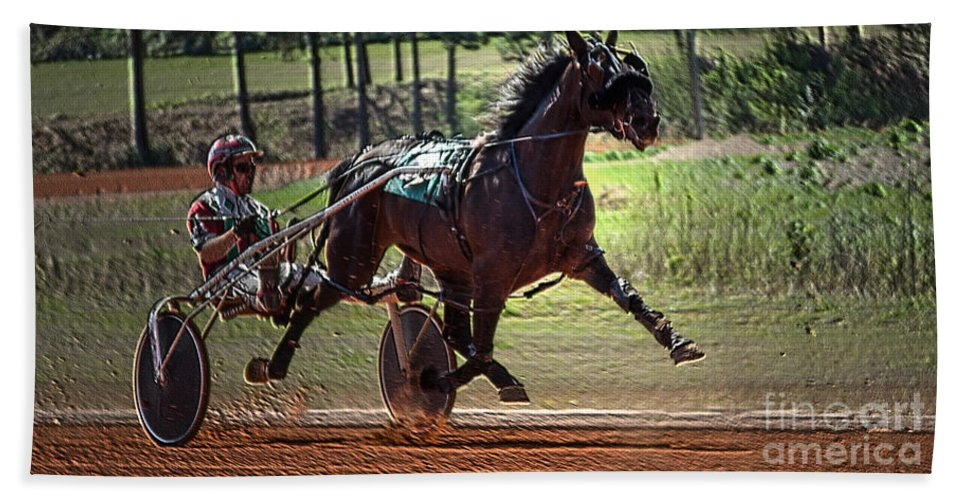 Animal Beach Towel featuring the photograph Pacer by Donna Brown