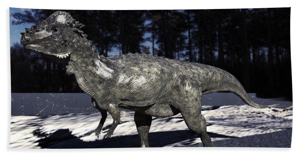 Dinosaurus Beach Towel featuring the digital art Pachycephalosaurus by Ramon Martinez