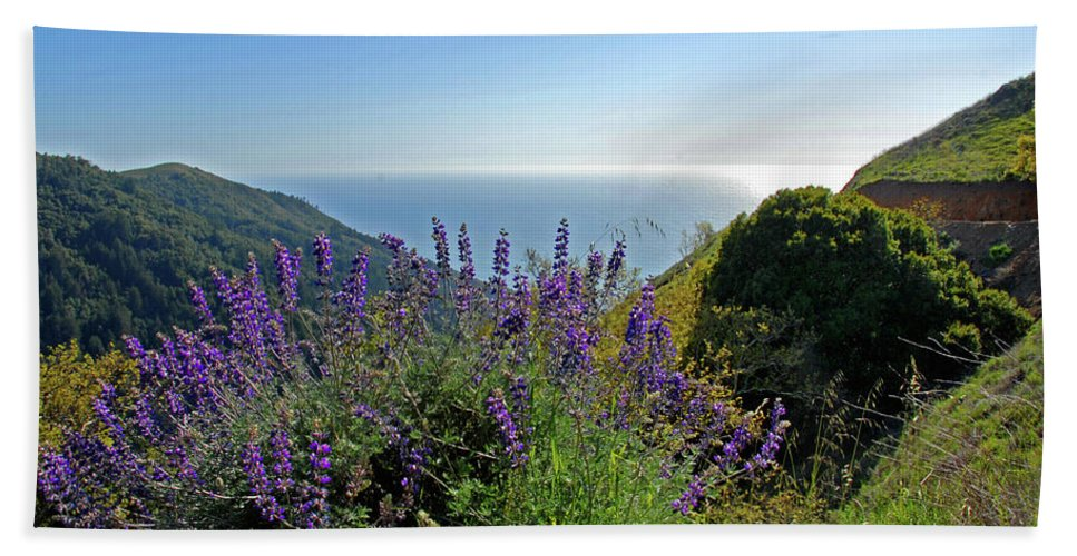 Lupines Beach Towel featuring the photograph Pacific Lupines by Lynn Bauer