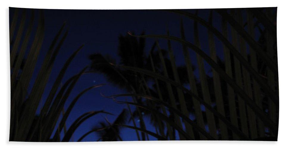 Night Sky Beach Towel featuring the photograph Palm Sky by Sarah Houser