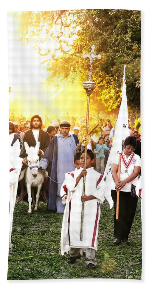 Mexico Beach Towel featuring the photograph Palm Sunday - Mexico by David Perry Lawrence