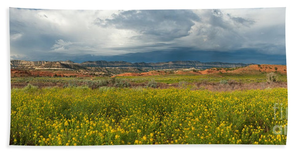 North America Beach Towel featuring the photograph Panorama Striaght Cliffs And Rabbitbrush Escalante Grand Staircase by Dave Welling
