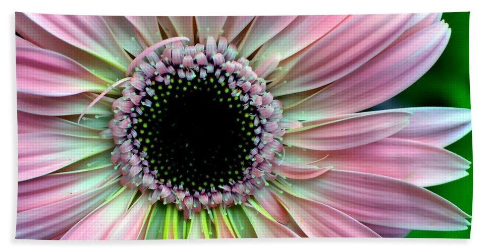 Flower Beach Towel featuring the photograph Pastel Power by Deena Stoddard